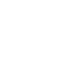 New York Business Journal Leadership Logo