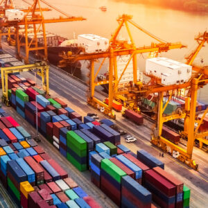 Supply Management and Exporting Solutions